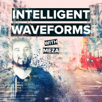 Meza - Intelligent Waveforms 008 feat Alexander Popov