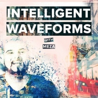 Meza - Intelligent Waveforms 012