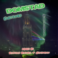 Ronald Richel - Domstad Electrified