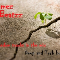 Wammes Beatzz - Deep and Tech House october 2015