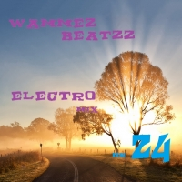 Wammes Beatzz - Electro mix volume 24