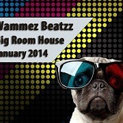 Wammes Beatzz - January 2014 mix selection