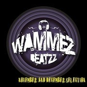 Wammes Beatzz - November and december 2013 Selection